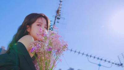Wind flower -Japanese ver.- - Mamamoo