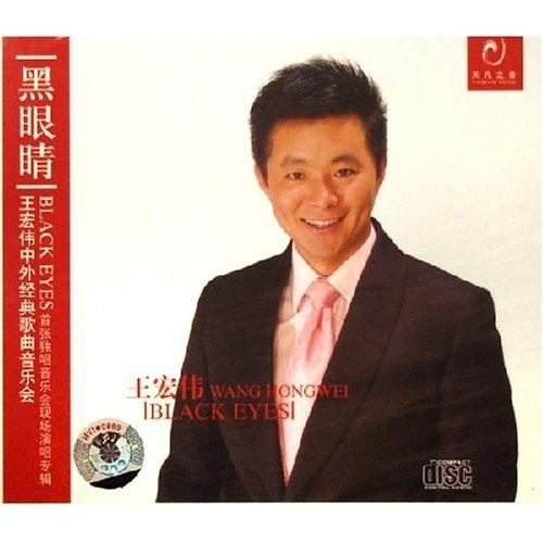 王宏伟 - 儿行千里 - 2006重制版