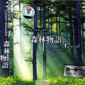 森林物语 - 圆舞曲 - 弦乐版纯音乐