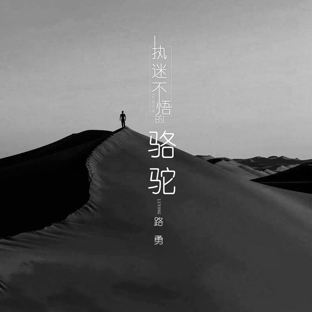 沙漠骆驼吉他歌谱