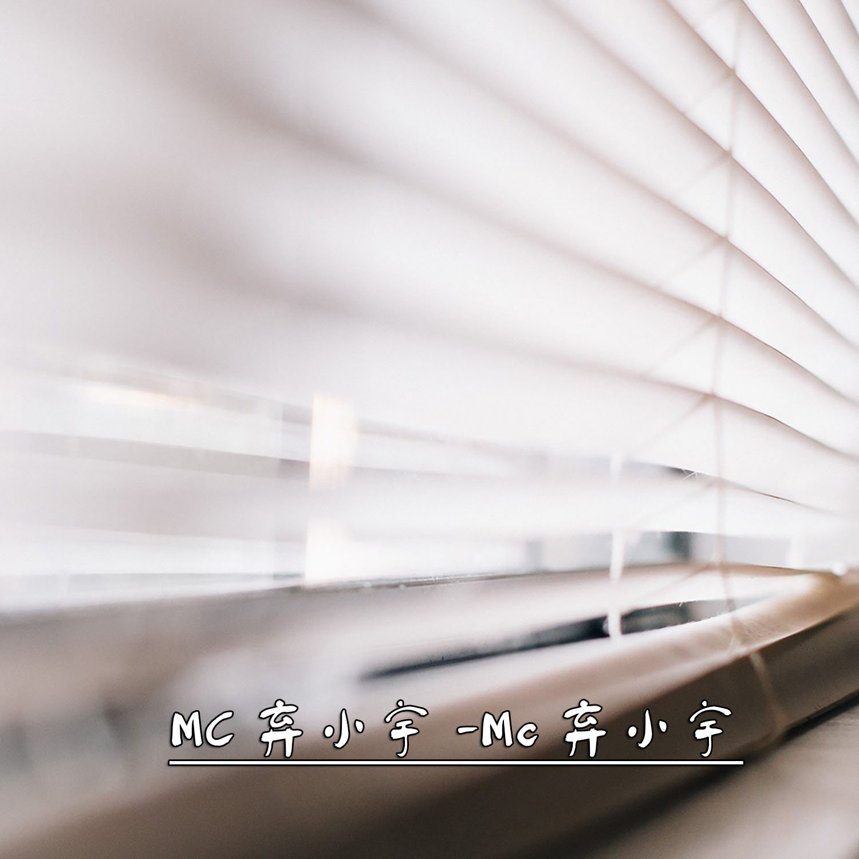 弃小宇 - 阴阳先生之张灵风图片