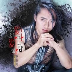 车载中文单曲《爱上抖音爱上你》下载(李浩南DJ何鹏版)MP3格式